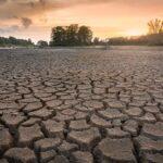 Dry land at sunset