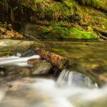 A small cascade in a creek